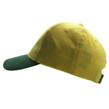 high quality 100%cotton printing logo baseball cap for men women