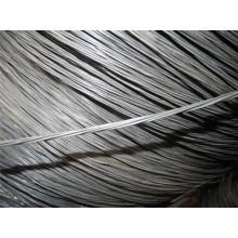 Geglühtes schwarzes Twist Wire (Q195)