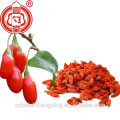 NingxiaLycium, Gojiberry-Air fruits séchés, Fruit de Barbarie Wolfberry, Fructus Lycii Ningxia fruit supérieur Goji baies