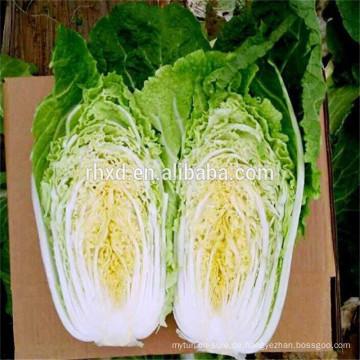 Großhandel Shandong Karotte Kohl Preise nach Sri Lanka exportieren