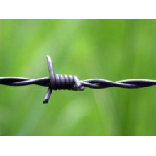 Razor Barbed Wire Mesh Fence-Anping Tianshun Company