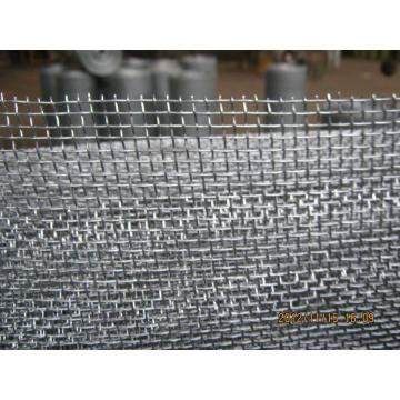 SS 304 Crimped Wire Fabric