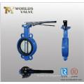 Behandeln von Wafer Drosselklappe mit Pin (D7A1X-10/16)