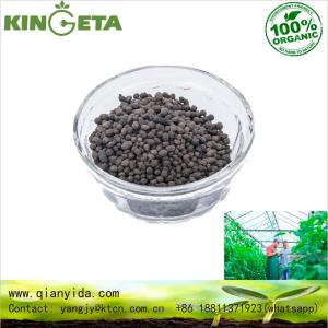 Seaweed Extract organic Fertilizer