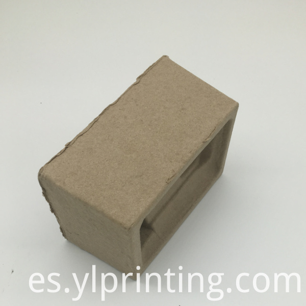 Disposable Paper Pulp Tray