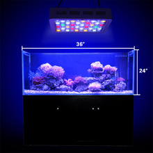 Dimmable Led Light avec interrupteur Aquarium Coral