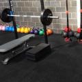 Good 15% Fleck Gym Floor Mats