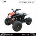Kids Gas 4 Wheeler Four Stroke Quad ATV 125cc with EPA/EEC