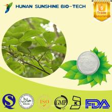 Extrait naturel de feuille d'Eucommia Ulmoides d'herbe chinoise