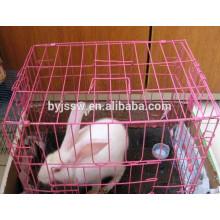 Rosa Kaninchenkäfig-Fabrik