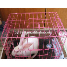 Pink Rabbit Cage Factory
