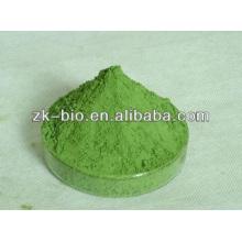 100% natürliches organisches Gersten-Gras-Pulver