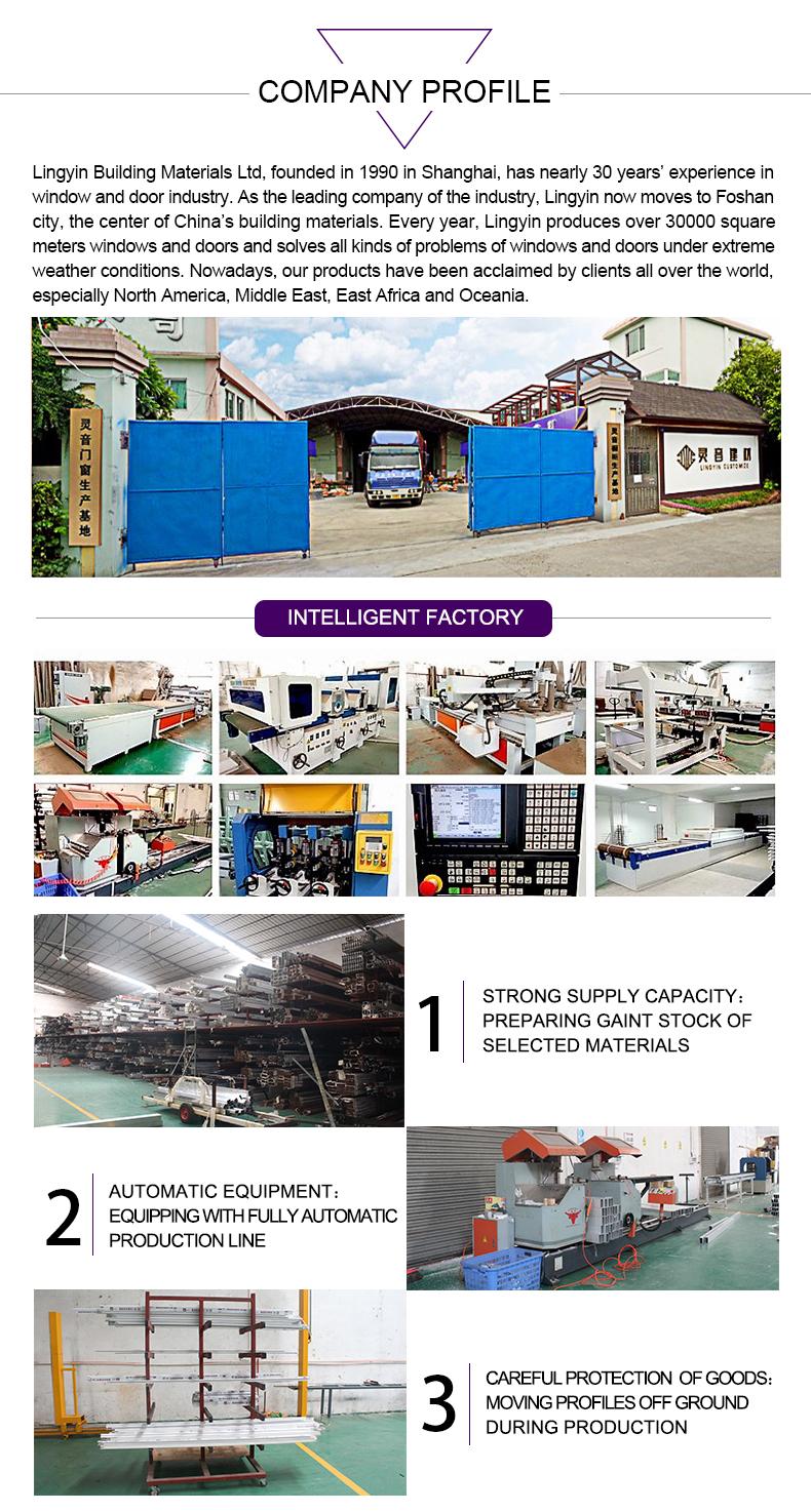 5 Company Profile