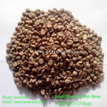 Granos de café verdes sin procesar