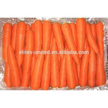 Chinese organic fresh carrot price