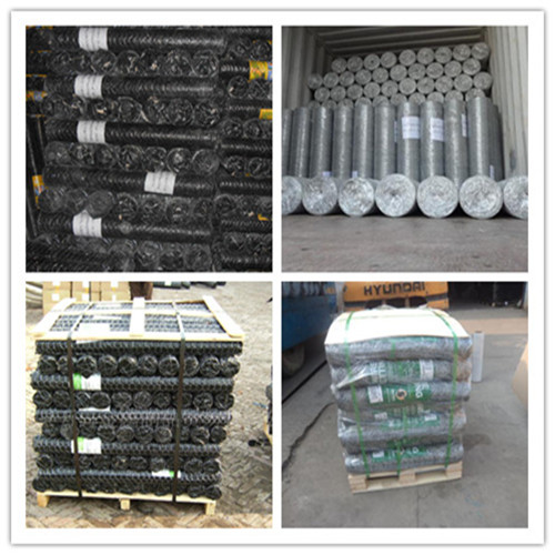 hexagonal wire mesh pakaging