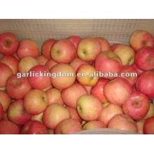 138-198 18kg Yantai Fuji Apple Preis
