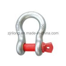 Us Type D Shackle avec Screw Pin 209 Dr-Z0080