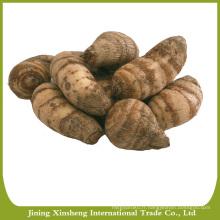Prix du marché du taro chinois