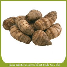 Chinese taro market price
