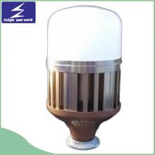 30W Globo LED bombilla de luz / lámpara (luz de bombilla de jaula de pájaro)