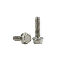 Metric stainless steel Hex flange bolts