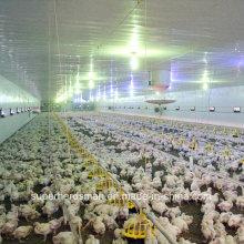 Full Set controlado por el medio ambiente Chicken Shed Machinery for Broiler