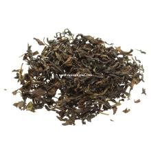 Bio-zertifizierte orientalische Schönheit Taiwan Oolong Tee A