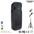 Dual 15 Inches Plastic Loudspeaker for Model Ebs215W