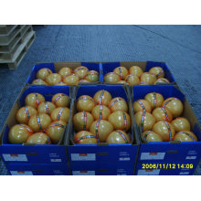 sell 2011 pomelo