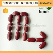 Wholesale type of chinese all variety beans