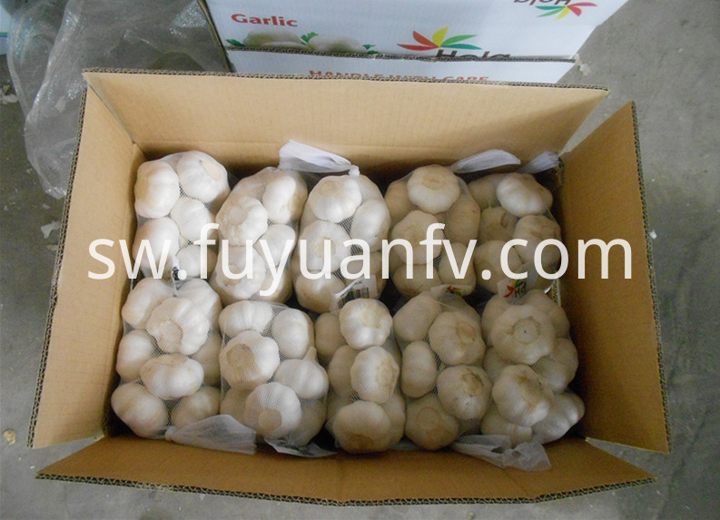 500g garlic in mesh bag