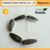 Sunflower Seeds Sellers Best Quality