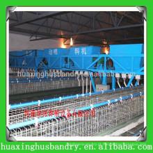 China equipamento popular e de boa qualidade para o galinheiro