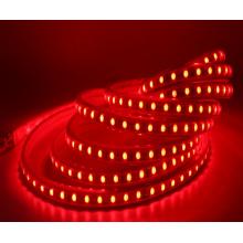 Luz de cadena de la decoración de neón del jardín al aire libre impermeable de la tira del RGB 220V LED 5050