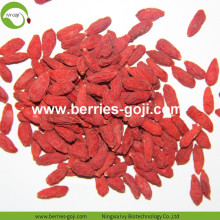 Supply Fruits Herbal Type A Grade Goji Berry