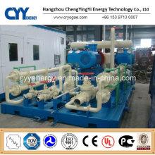 Skid-Mounted Lcng CNG LNG Kombi-Tankstelle