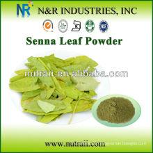 Natural and Pure Plant Powder Senna Powder and Senna Leaf Extract from Senna Leaf