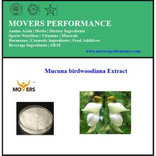 Хорошая цена Высокое качество Mucuna Birdwoodiana Extract (стебель)