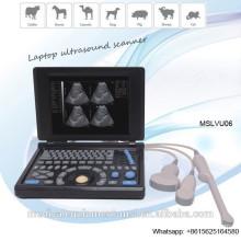 MSLVU06 3D Laptop Vet Ultraschall Scanner für Katzen, Hunde, Schafe, Kühe und Pferde, ect.