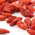 High Quality Organic Goji Berry From Ningxia