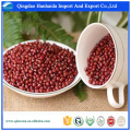 Competitve price organic health food high quality Azuki Beans with reasonable price on hot selling !!
