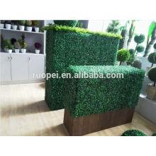 parede artificial da planta da folha viva