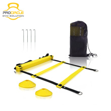 Procircle New Design Custom Agility Ladder With Carry Bag