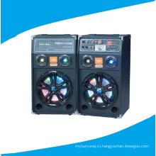 Двойной спикер диктора 10inch PA включая дистанционный цветастый свет 630A