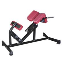 Fitnessgeräte für Hyperextension (FW-1006)