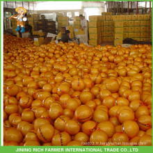 Fruits de raisin chinois Pomelo frais pour la Russie