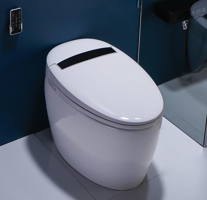 8102 1 Smart Toilet