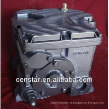 Bomba de transferência elétrica 220V diesel combustível