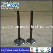 Auto Parts Engine Valve for Volvo Lada 240